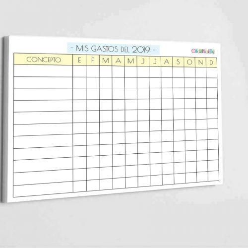 16.organizador-gastos-mensual