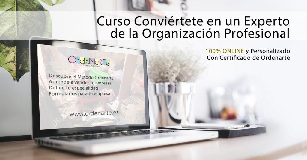curso-op-online-experto