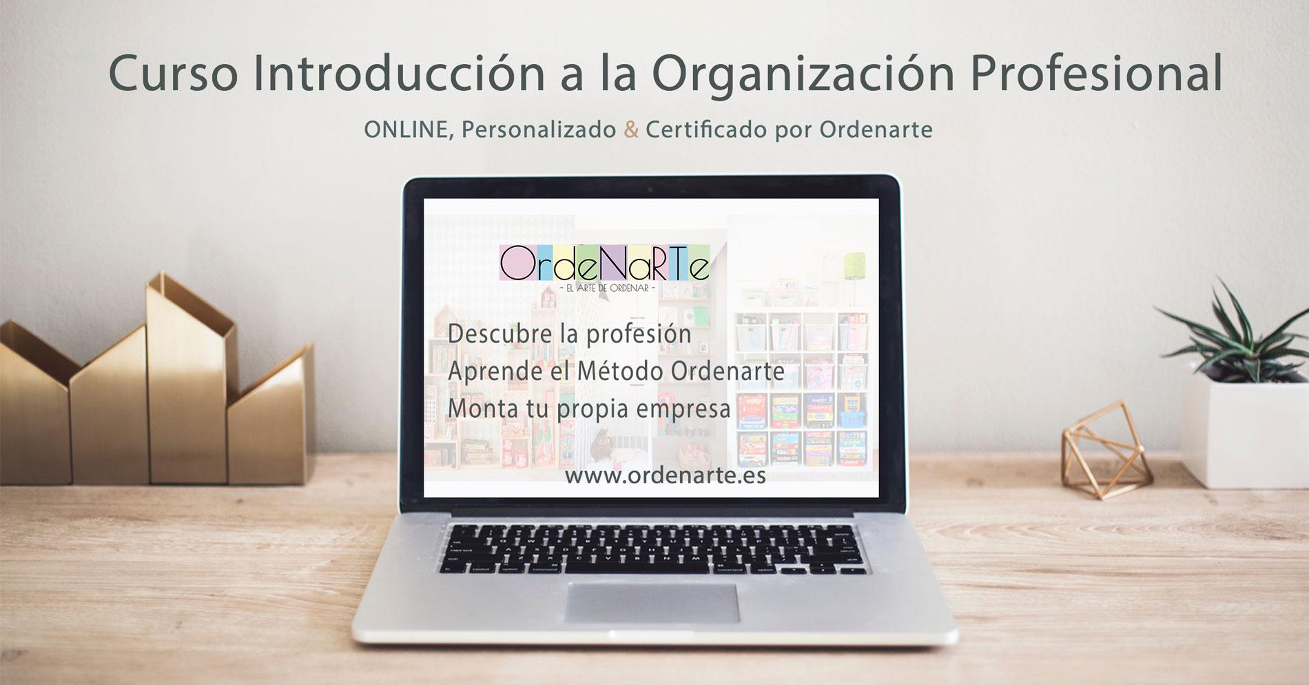 cursos-organizacion-profesional-online
