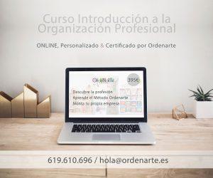 curso-introducción-organización