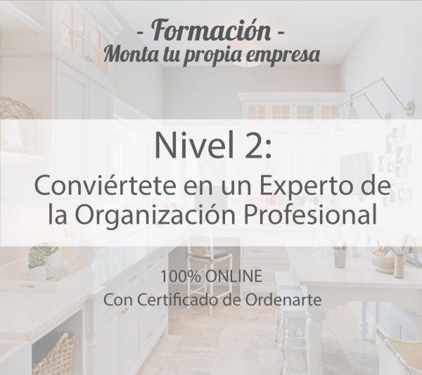 experto-de-la-organizacion