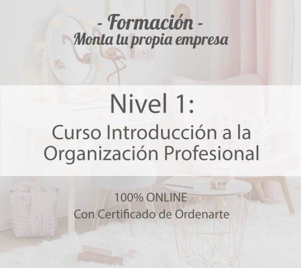 curso-introduccion-orden
