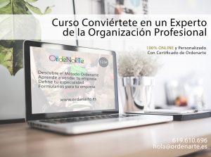 curso-experto-organización