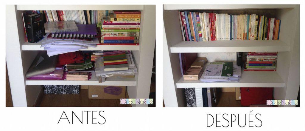 ordenar-los-libros